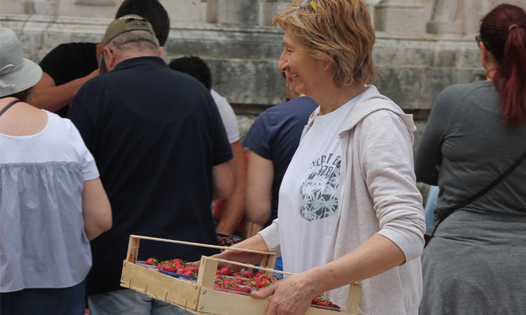 carrying strawberries in dubrovnik