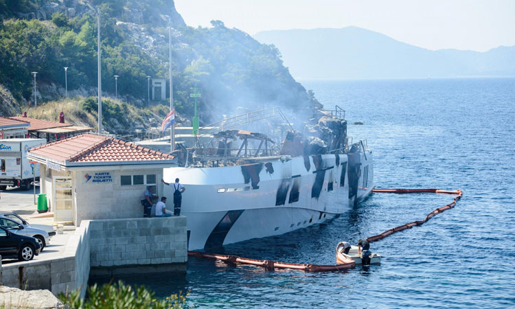 kanga in safe harbour after fire