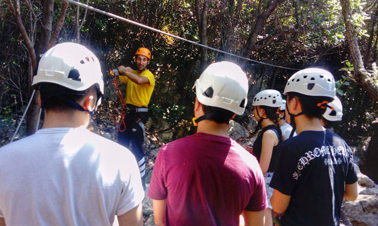 zip line training