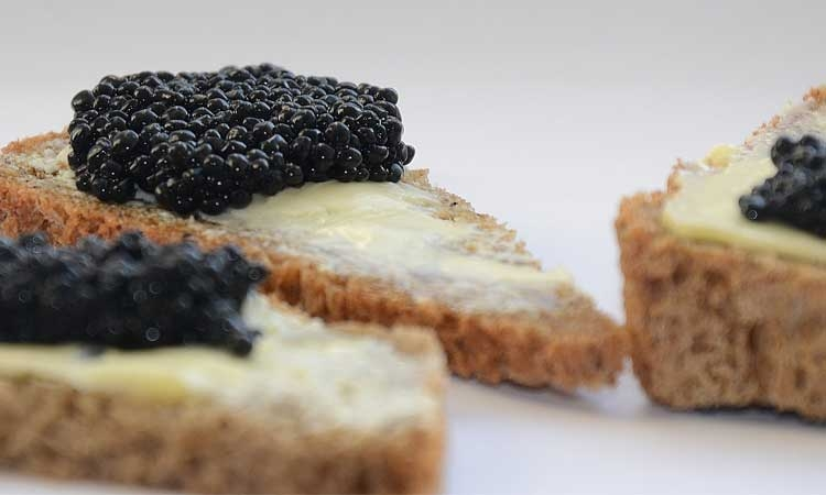 Croatian produced caviar coming soon