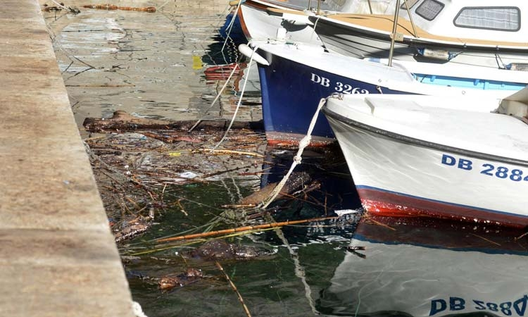 Cleaner seas in Dubrovnik harbour