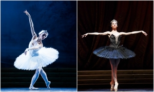Three evenings of ballet romance in the park Gradac