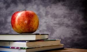 The City of Dubrovnik to provide fruit for schoolchildren