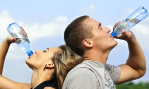 Saudi Arabian company shows interest in buying Croatian water
