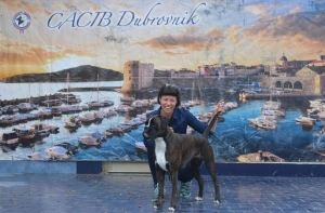 Photo Gallery – Pick your favourite: dog show opened in Dubrovnik