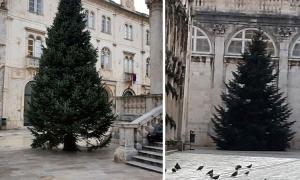 Christmas trees go up in Dubrovnik as holidays draw closer