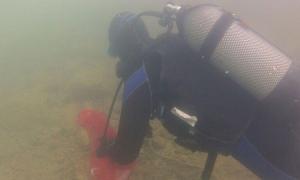 Sea bed cleanup on Kolocep island