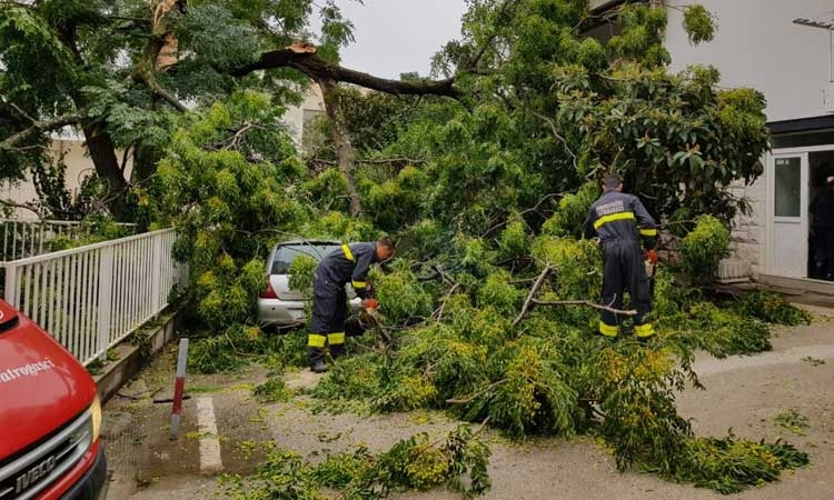 Gale force winds rip up trees and flip over a caravan in Dubrovnik