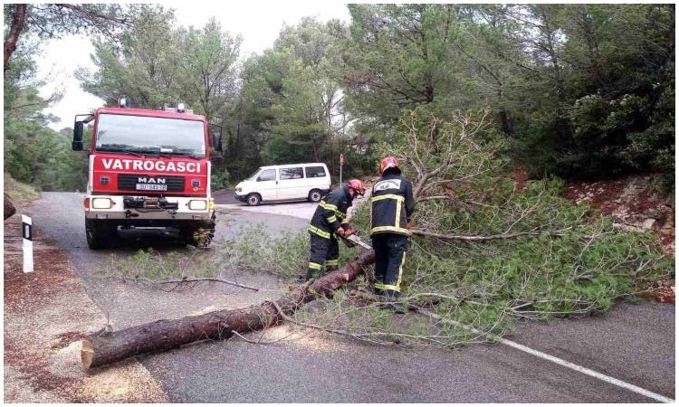 PHOTO - Strong wind causes chaos on Mljet, Lastovo and Peljesac