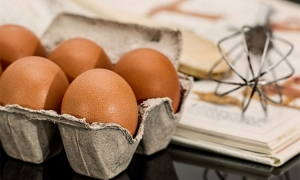 Croatia egg industry sees massive growth in exports