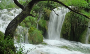 VIDEO - Power of nature on display in Plitvice Lakes