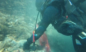Sea bed cleaned in eco action on the island of Lopud