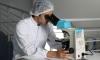 Coronavirus Dubrovnik: Nine new cases in Dubrovnik as total rises to 59