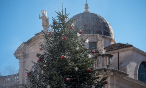 Photo gallery - Christmas tree gets its winter coat