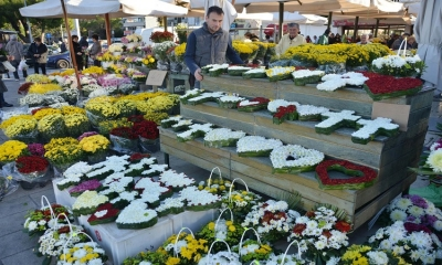 Photo Gallery - Dubrovnik full of flowers before All Saints Day
