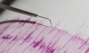 Metkovic shakes as quake rumbles through