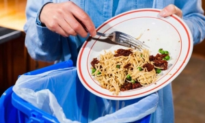380,000 tonnes of food wasted every year in Croatia