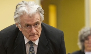 Radovan Karadzic sentenced to life imprisonment for war crimes and genocide