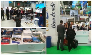 Dubrovnik-Neretva County promoted at the FITUR fair in Madrid