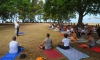 International Day of Yoga marked on Lokrum