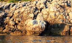 Croatian Loch Ness Monster spotted in Konavle