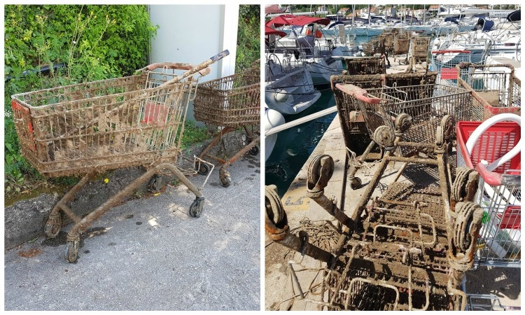 PHOTO - Divers find 73 shopping carts in the sea