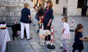International White Cane Safety Day marked in Dubrovnik