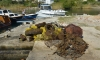 Clear up action of the seabed in Zaton