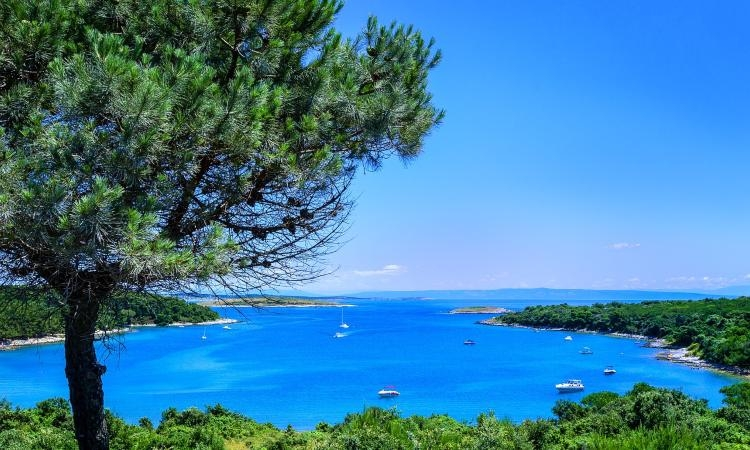 Did you know that Croatia is one of the richest countries in Europe in terms of biodiversity?