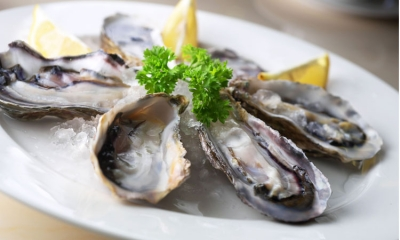 Day of Ston oysters to be held at end of March