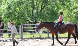 Children from Dom Maslina enjoy horse riding excursion