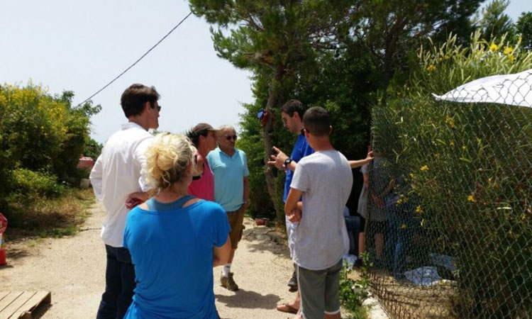 Goran Visnjic visits Dubrovnik animal shelter