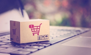 Best Shopify and Dropshipping Courses for Beginners