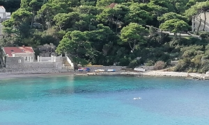 VIDEO – Swimming in Dubrovnik on the 11th day of the 11th month at 11:00 am