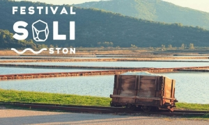 Salt Festival in Ston to open on 28th of August