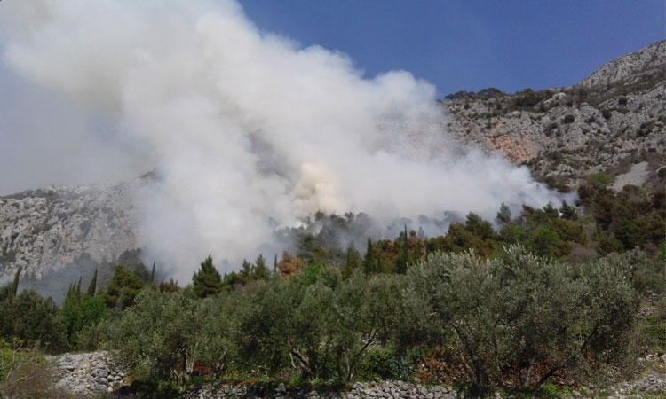 Forest fire in Konvale