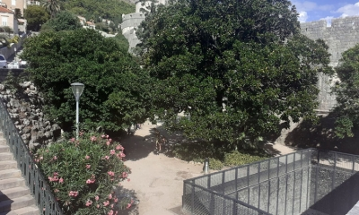 Popular Dubrovnik park to be locked at night due to vandalism