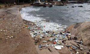 Plastic bottles choke beach in Konavle