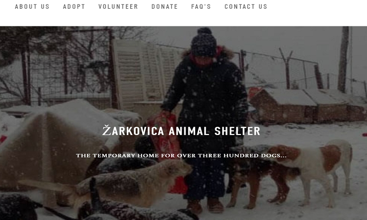 WITH A LITTLE HELP FROM AUSTRALIA: Zarkovica Animal Shelter gets a new website