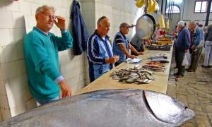 Croatia's islands proving a hotbed for entrepreneurs