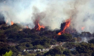 Horrific forest fires on Peljesac