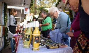 """Never tried """"prikle"""" now is your chance at the Dubrovnik Health Food Fair"""