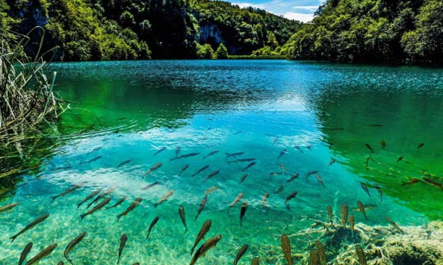 ... Most Beautiful Countries In The World. Plitvice Lakes National Park