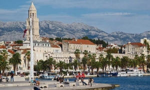 Split attracts winter guests