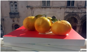 Fruit meals provided for Dubrovnik elementary students