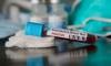 Coronavirus Croatia: 713 cases of coronavirus confirmed – six people have died