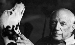 Picasso coming to Dubrovnik