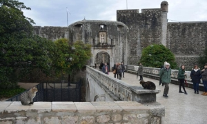 Senior groups charter program to bring over 30 thousand visitors to Dubrovnik