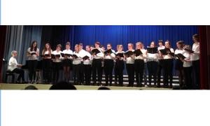 Waldorf - German school choir to perform in the Old City