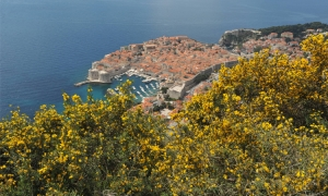 Skip London and Paris: Dubrovnik as one of overlooked European cities by the Americans